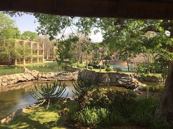 킹덤 앳 빅토리아 폴스 사진