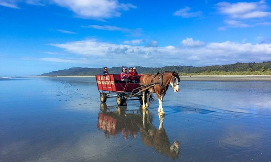 Golden Sands Horse and Wagon Tours