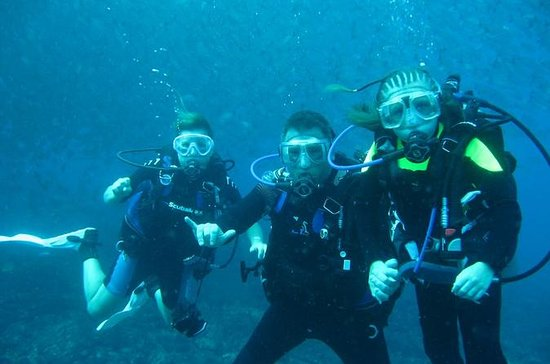 Half-day Scuba Diving Tour in the...