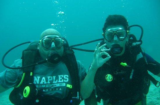 Introductory 5-Hour Scuba Diving Tour...