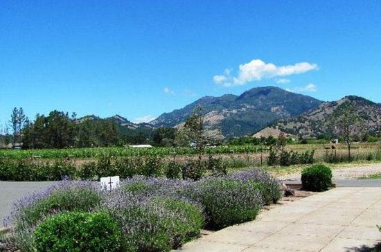 Calistoga Wine Country Sip 'n' Cycle...