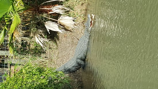 Kenansville, FL: 20161230_130351_large.jpg