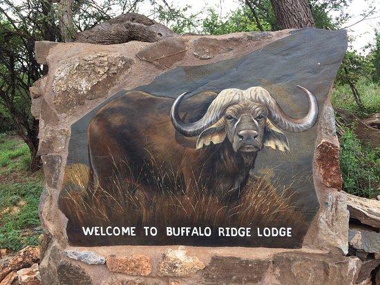Buffalo Ridge Lodge: photo5.jpg