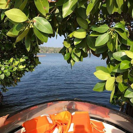 Fragrant Nature Backwater Resort & Ayurveda Spa: photo0.jpg