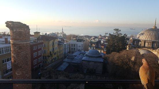 Ada Hotel Istanbul: 20161227_082637_large.jpg