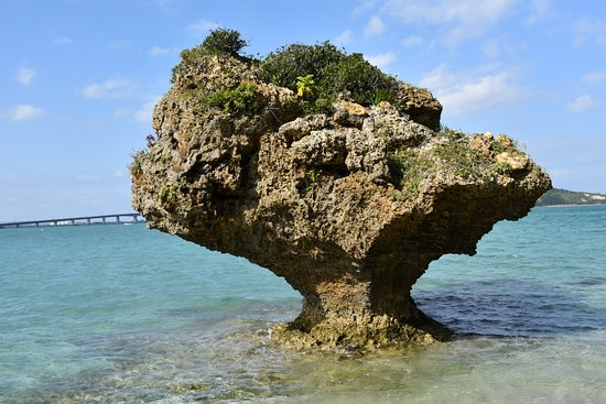 島の案内板 - Picture of Hamahiga-jima Island, Uruma - TripAdvisor