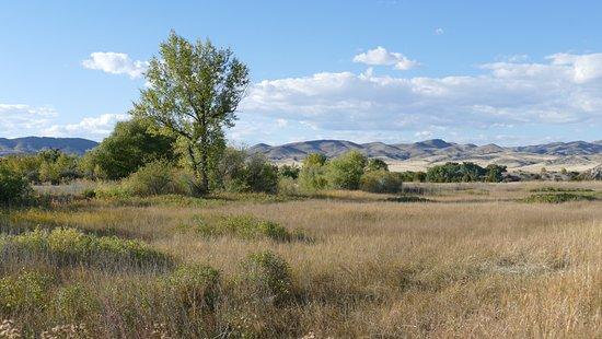 Three Forks, Montana: Friedliche Landschaft