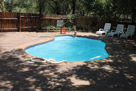 Marloth Park, Sydafrika: Pool besides the retaurant