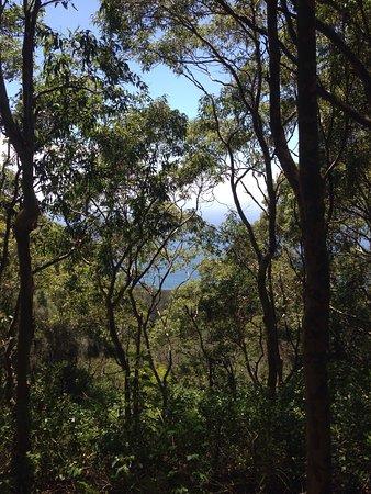 Bateau Bay, Australia: photo5.jpg