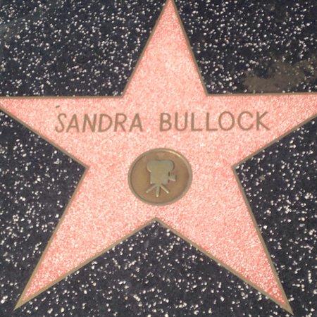 W Hollywood: photo7.jpg