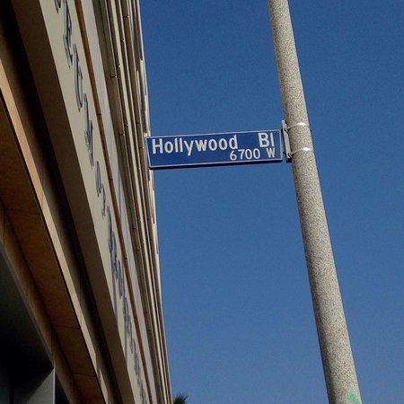 W Hollywood: photo9.jpg