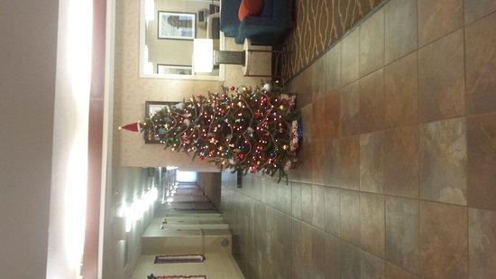 Cahokia, Ιλινόις: 20161225_090241_large.jpg