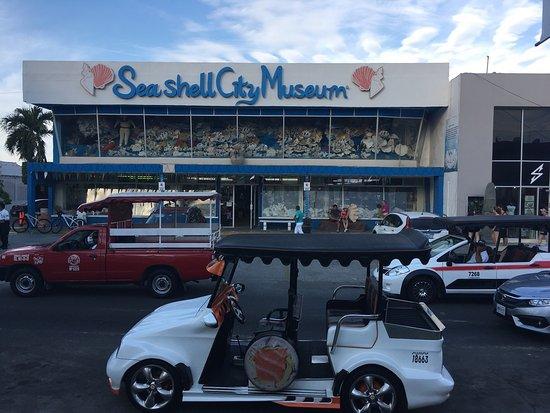 Sea Shell City Museo de Conchas: photo0.jpg