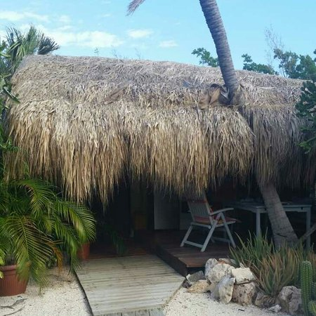 Beach House Aruba Apartments: Number 8 unit in corner quiet and private. Just wonderful. Here with wife for new years and anni