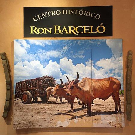 Centro Historico Ron Barcelo: photo2.jpg