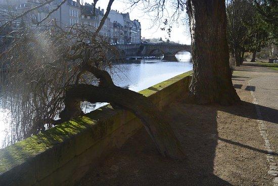 Canal de la Moselle : Parc de l'îlot