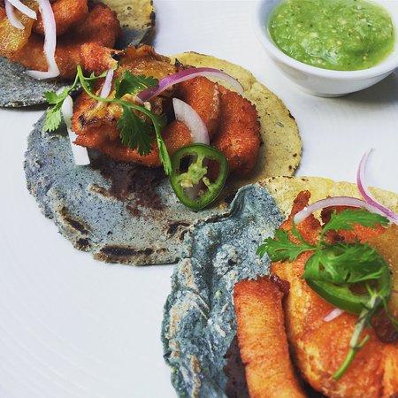 Tierra y Cielo Restaurante: Nuevos platillos en el menú 2017 Ceviche verde de hoja santa con robalo y camarón seco   Taco