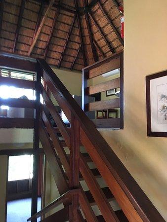 Заповедник Хлухлуве, Южная Африка: photo2.jpg