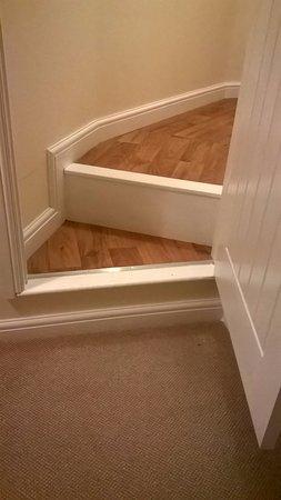 The Swan Hotel: steps leading into bathroom