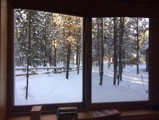 Columbia Falls, MT: View from the side window