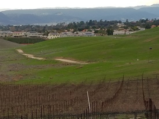 South Coast Winery: 20161230_152228_large.jpg