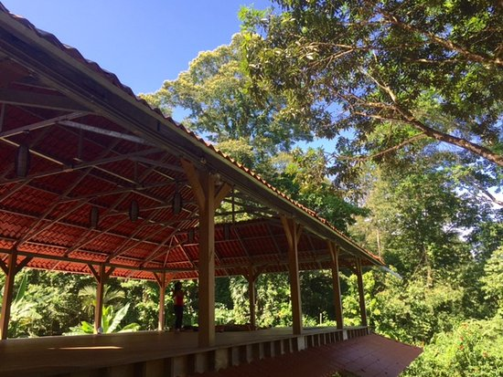 OM at Cashew Hill Yoga Retreat and Training Center