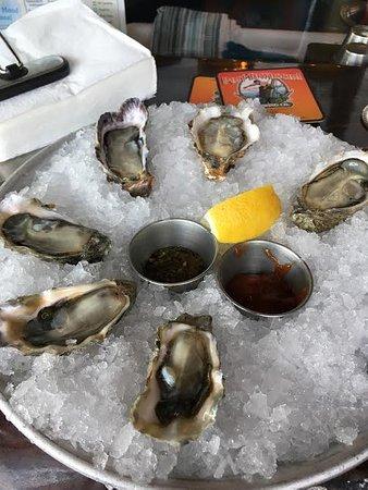 Lilliwaup, WA: Raw Oysters