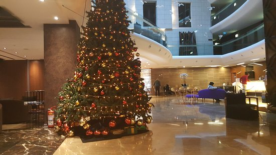 DoubleTree by Hilton Istanbul - Old Town: 20161226_071145_large.jpg