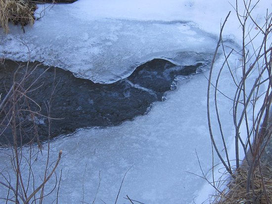 Franktown, CO: Frozen areas of the stream. It is cold down there.