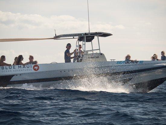 ‪Blue Maui Ocean Adventures‬