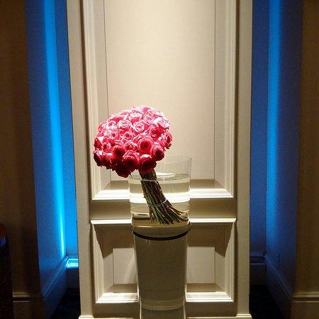 The Ritz-Carlton, Laguna Niguel: IMG_20161021_184245_large.jpg