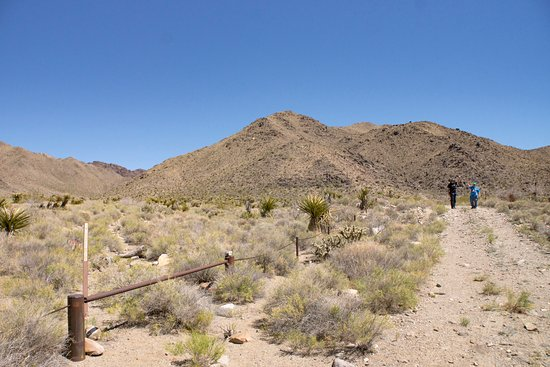 Dolan Springs, Αριζόνα: Mount Tipton Wilderness Reserve Boundry