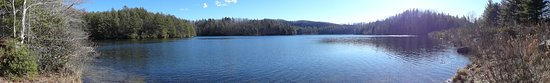 Cedar Mountain, NC: Lake Julia Dupont State Forest