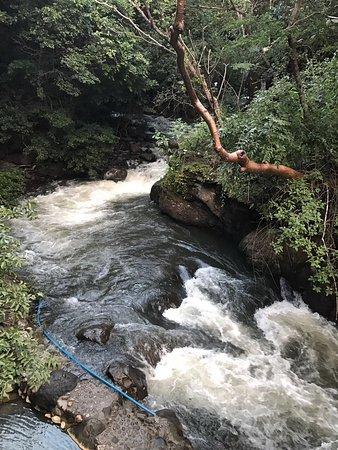 Rincon de La Vieja, Costa Rica: Rapids