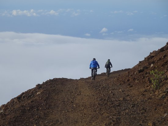 Krank Cycles: Skyline Trail...above the clouds!