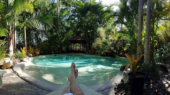 Eudlo, Australia: pool side so comfy