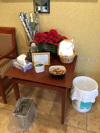 BEST WESTERN PLUS Chemainus Inn: This was the doggy table in the lobby.