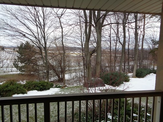 The Inn at Chateau Grand Traverse: Balcony view in December