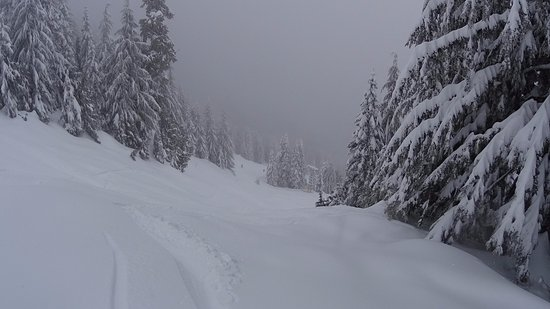 North Vancouver, Canada: Hades full of powder snow