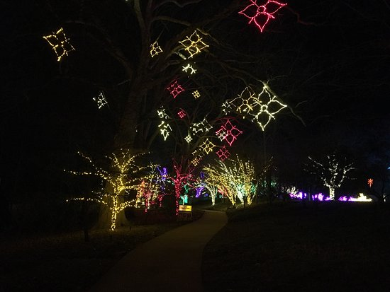 beautiful lights! - picture of cheekwood botanical gardens