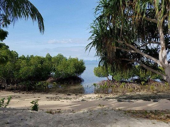 Dos Palmas Island Resort & Spa : photo3.jpg