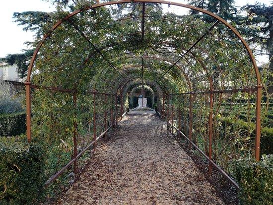 Palazzo di Ludovico il Moro (Palazzo Costabili) : Particolare del giardino
