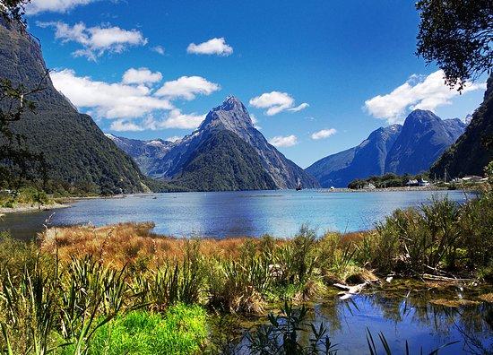 La plupart des expatriés sinstallent à Auckland car cest la plus grande.