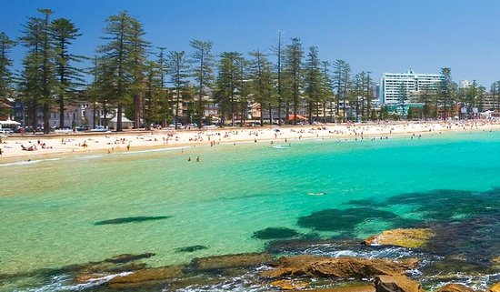 Manly Beach See It On Sydney Private Day Tours Northern Beaches Tour