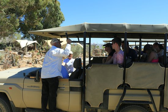 Inverdoorn Game Reserve: The 4x4s