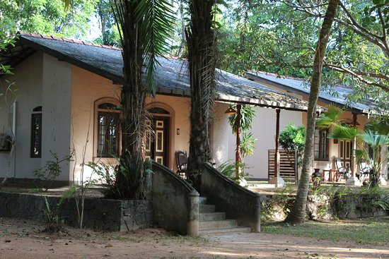 Ging Oya Lodge: Our two houses. The interior was great too.