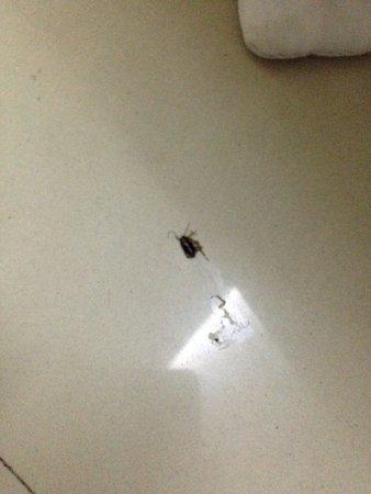 Hotel Delhi Aerocity: photo1.jpg