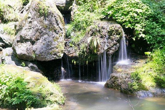 Maniwa, Japan: 滝に行く途中の渓流