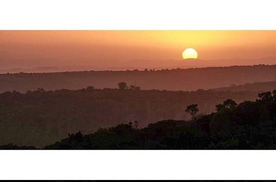Kenton-on-Sea, Sydafrika: Some snaps from Kariega game reserve