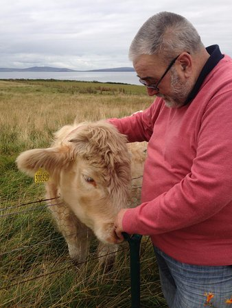 Burray, UK: Husband and Snowflake, neighbour's highland cow.